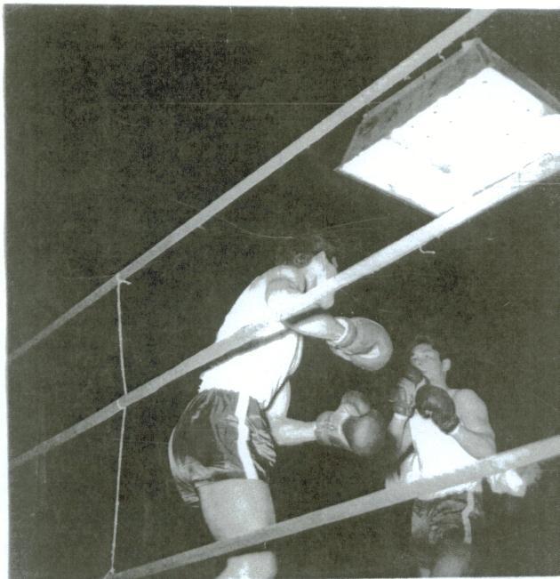 iraj boxing